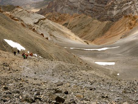 Himalayan Pashmina – The Journeys That Wool Took