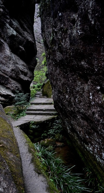 Getting to and into the Wuyishan reserve is by pathway and pathway only.