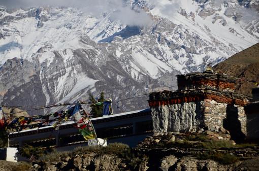 White Waits - Annapurna, Nepal