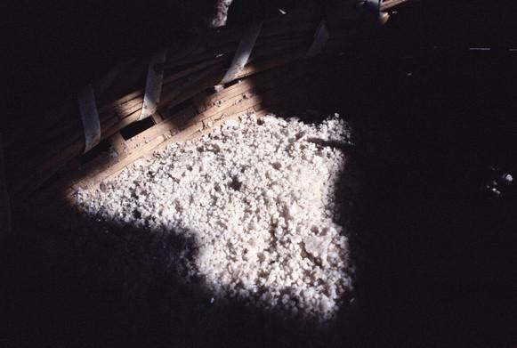 White Gold - Salt