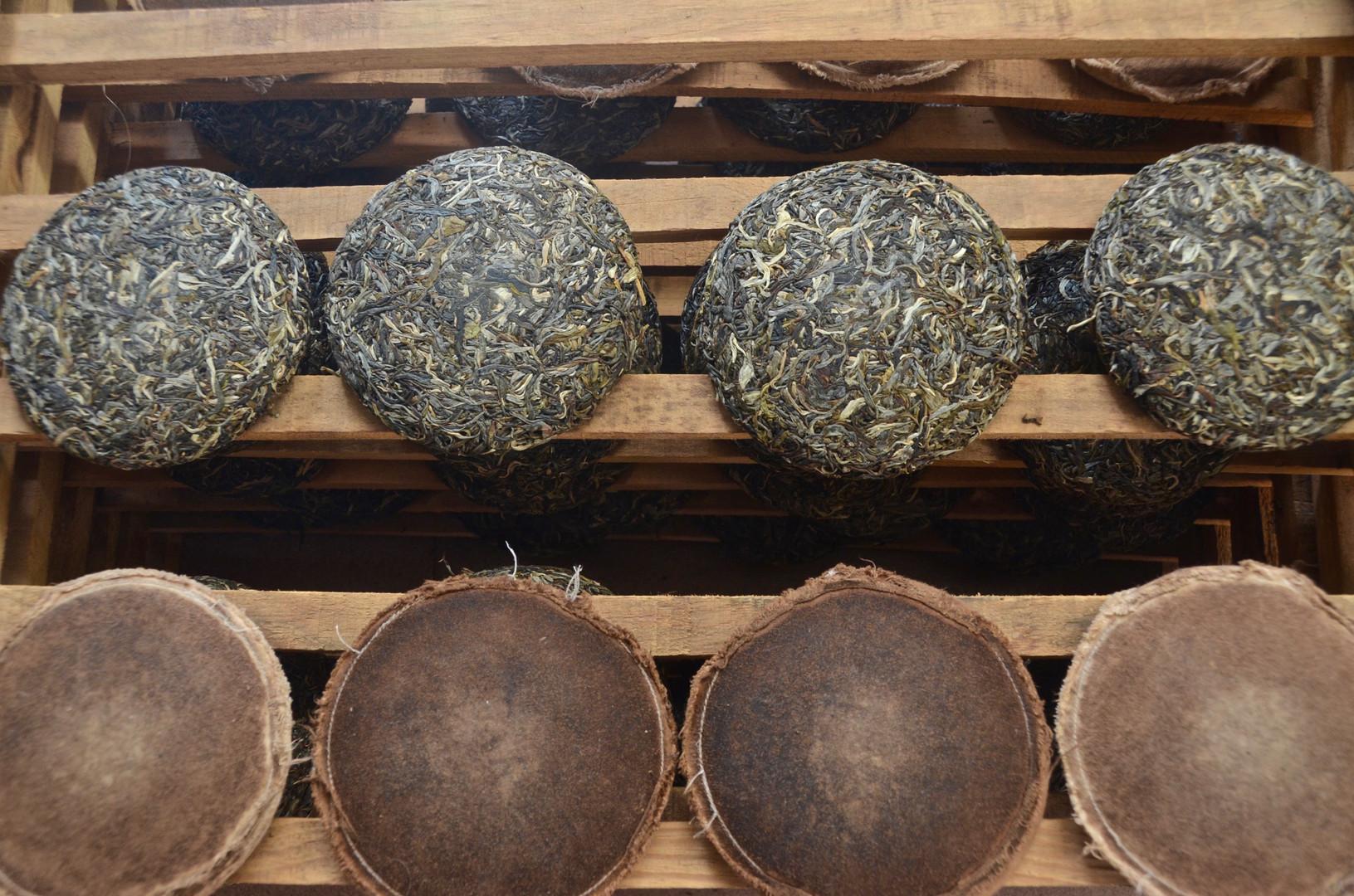 Compressed Tea Cakes - Green Gold - Menghai, Yunnan