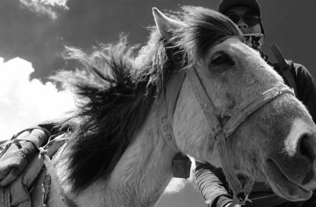 Mustang – Part 2 – Route of Khampas