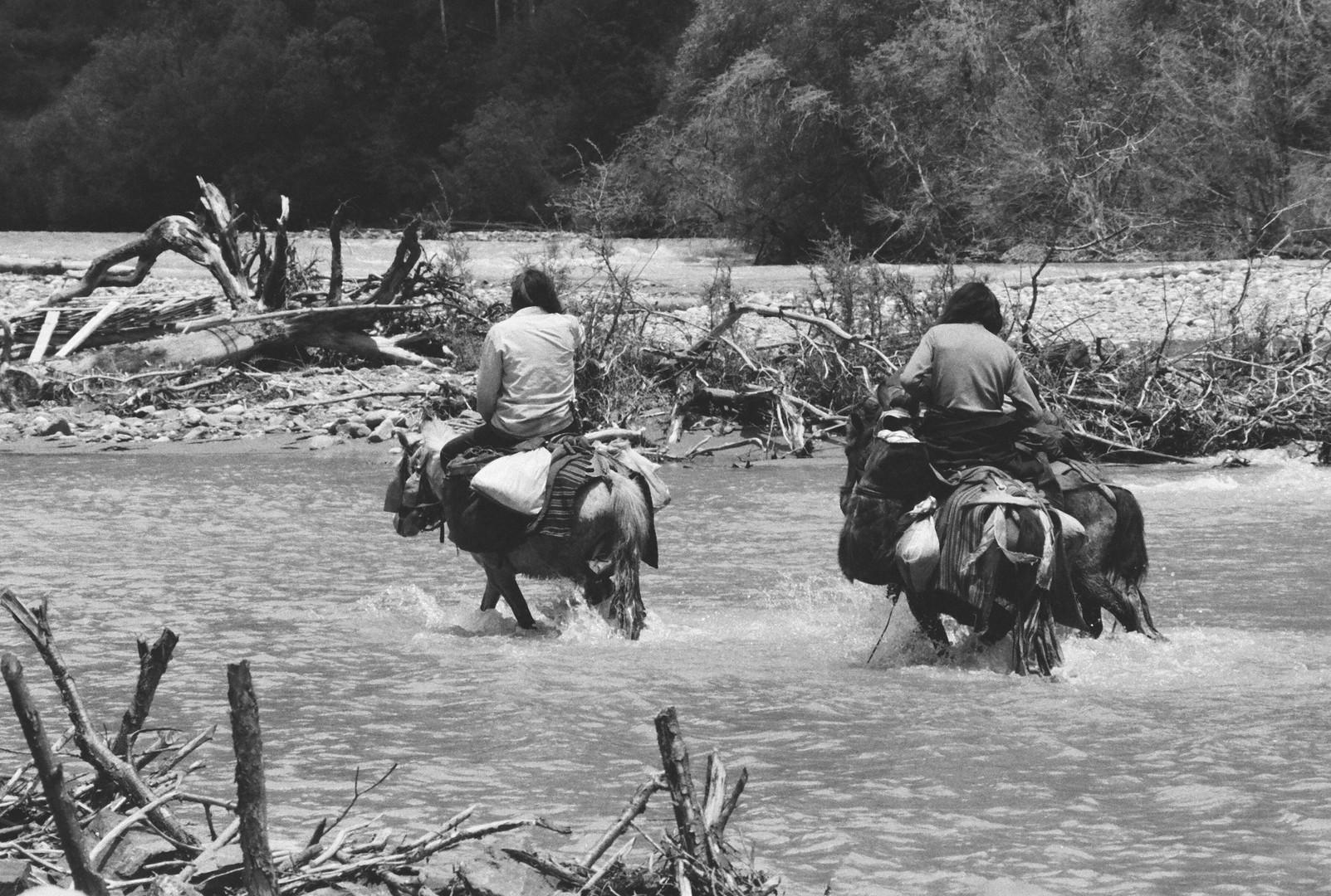 Tea Horse Road - Tibet