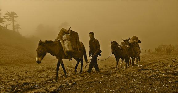 Caravan Days - Tea Horse Road