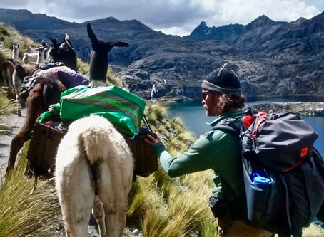 Ayni – Reciprocity. The Third Installment of our Andean Journeys along the Inca Road