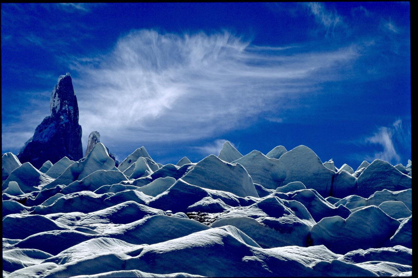 Teeth - Patagonia