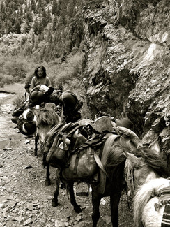 Tea Horse Road Trails - Tibet