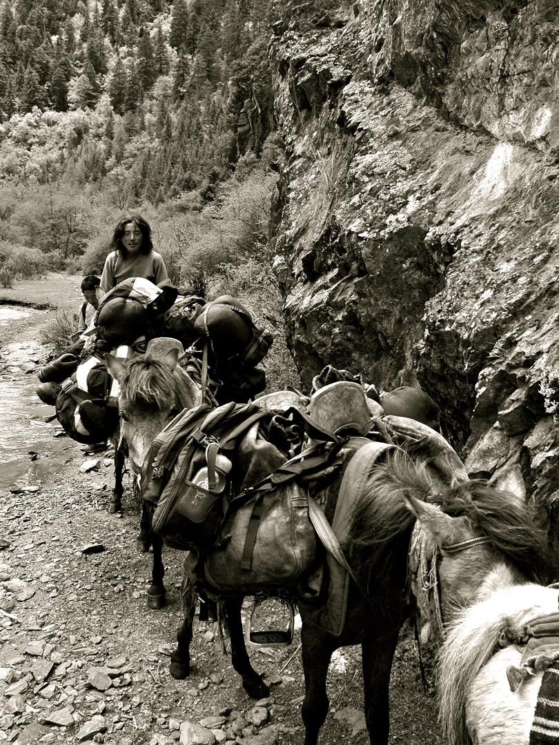 Tea Horse Road Trails - Tibet