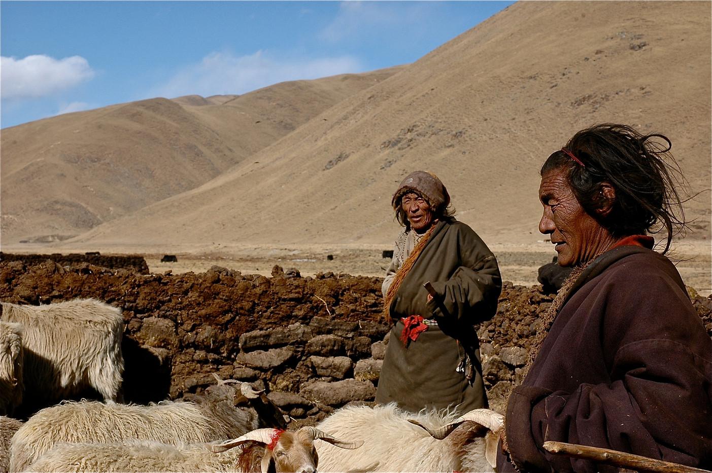 The Watchers - Sichuan