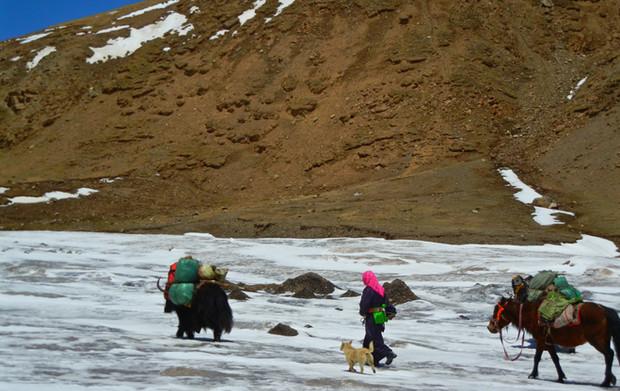 Amne Machin Kora - Qinghai