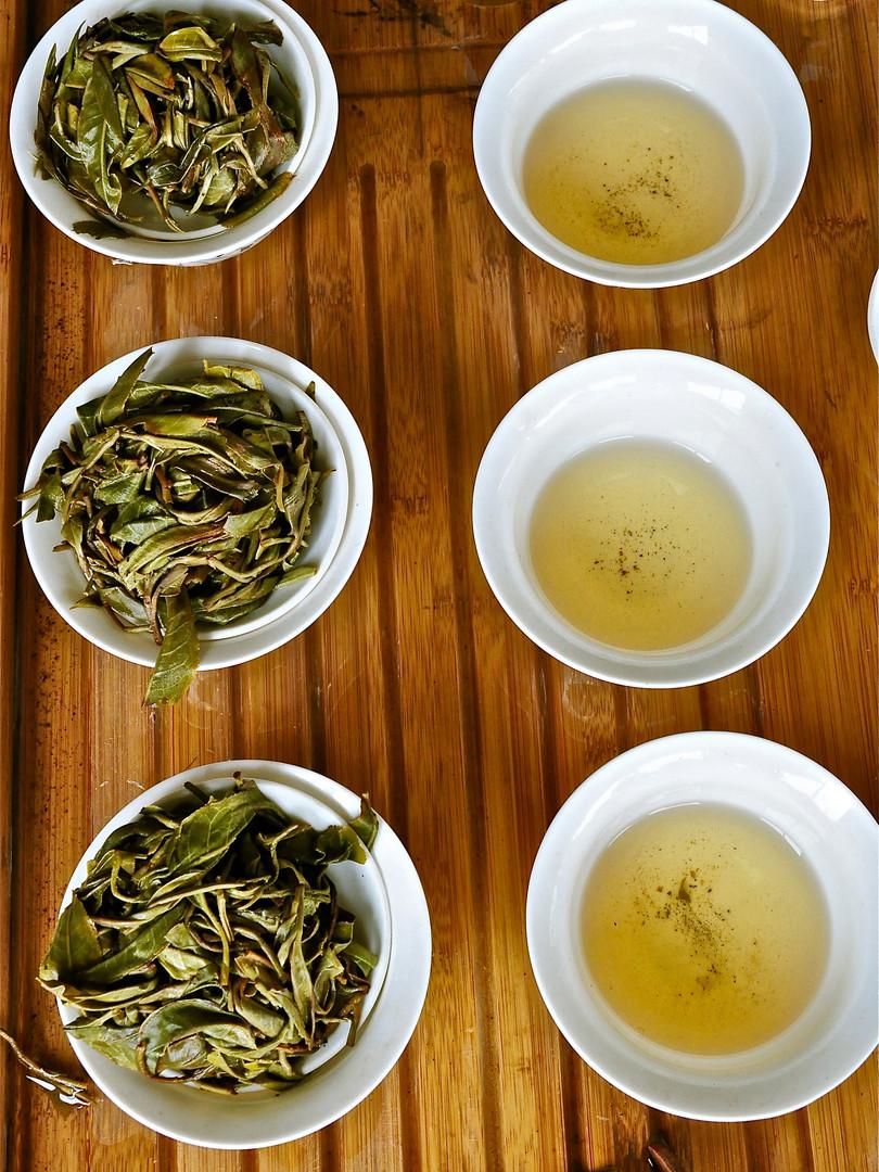 Three - Lao Banzhang, Yunnan
