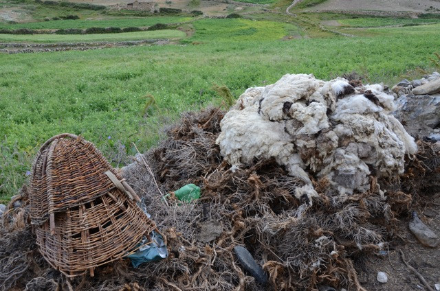 Wool...a commodity like few others. Only salt and tea can claim such 'fame' along the trade routes.