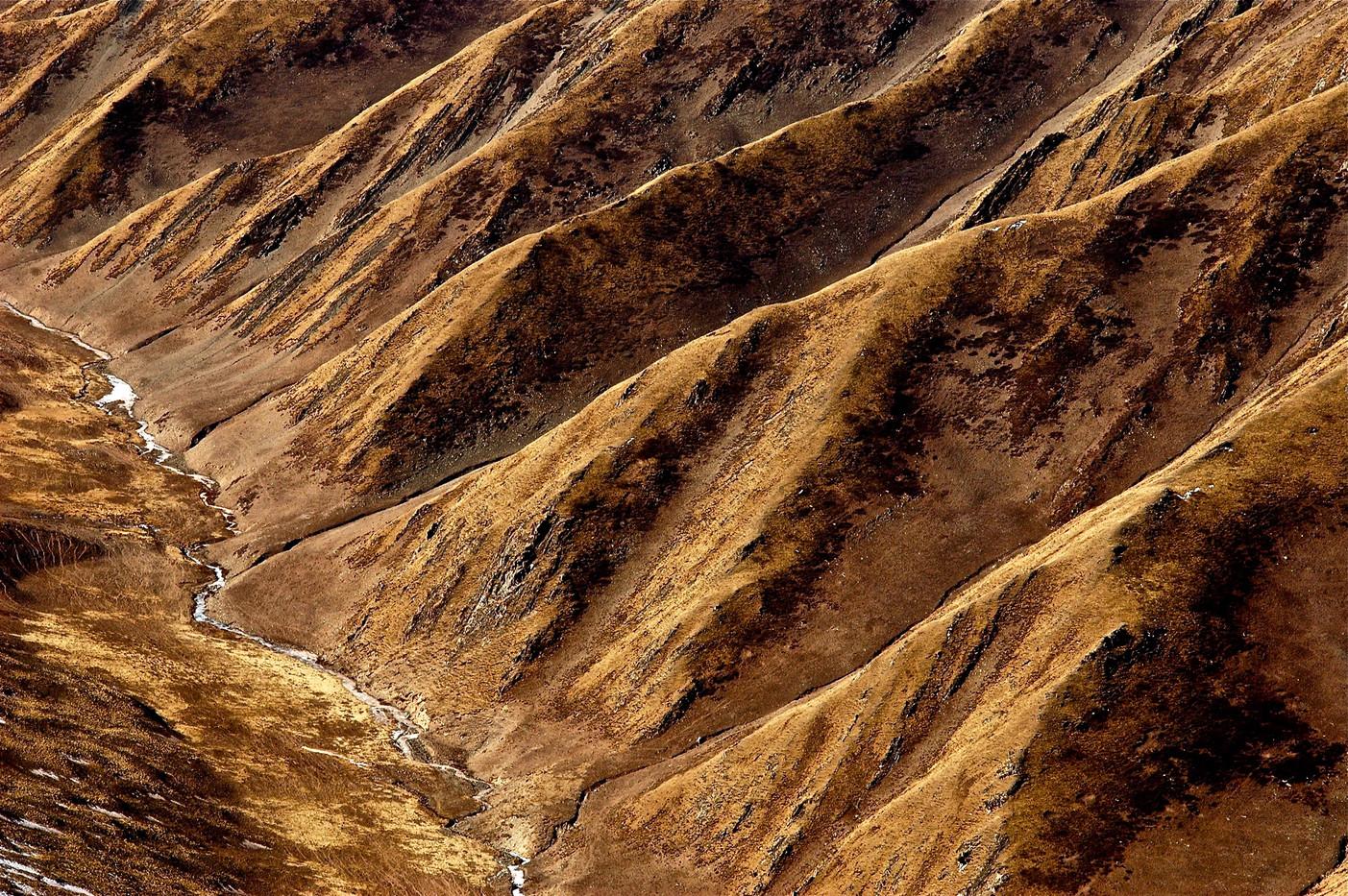 Wolf Lane - Qinghai/Amdo