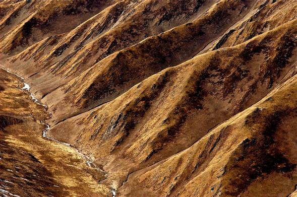 Ribs - Golog, Qinghai