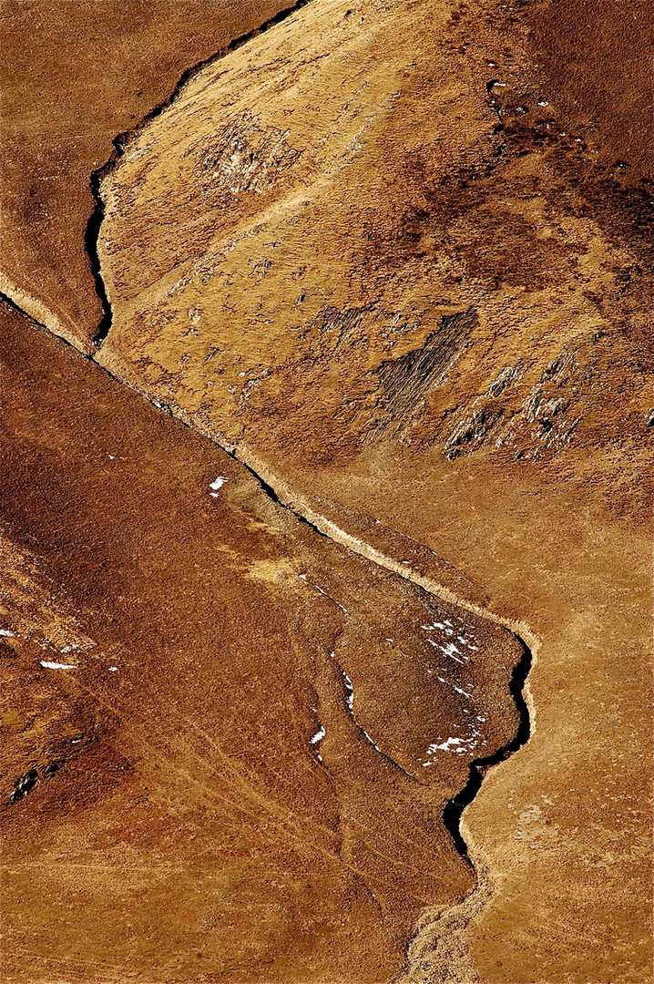 Wolf Run - Golog, Qinghai