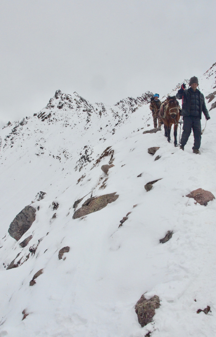 Descent in Time - Shola Pass, Yunnan