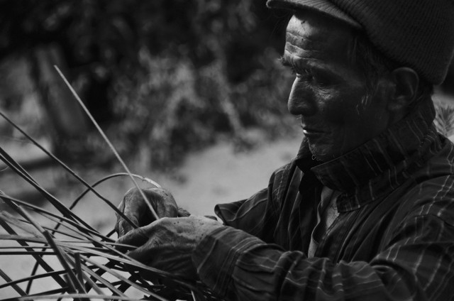 A Hani elder from southern Yunnan hand-makes a tea basket.