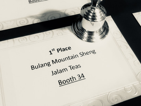 Puerh – A Sheng Takes the Palates