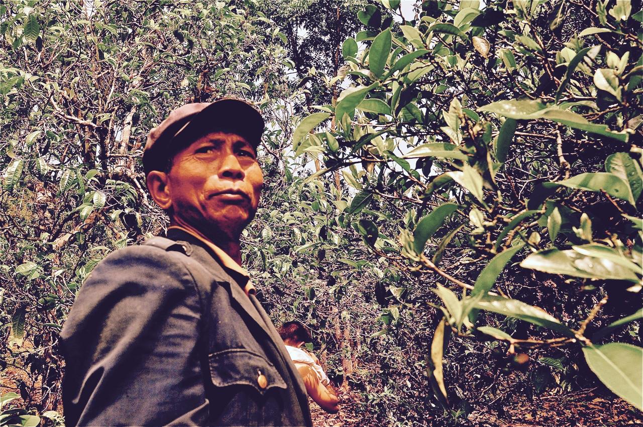 Bulang Elder - Lao Ma E, Yunnan