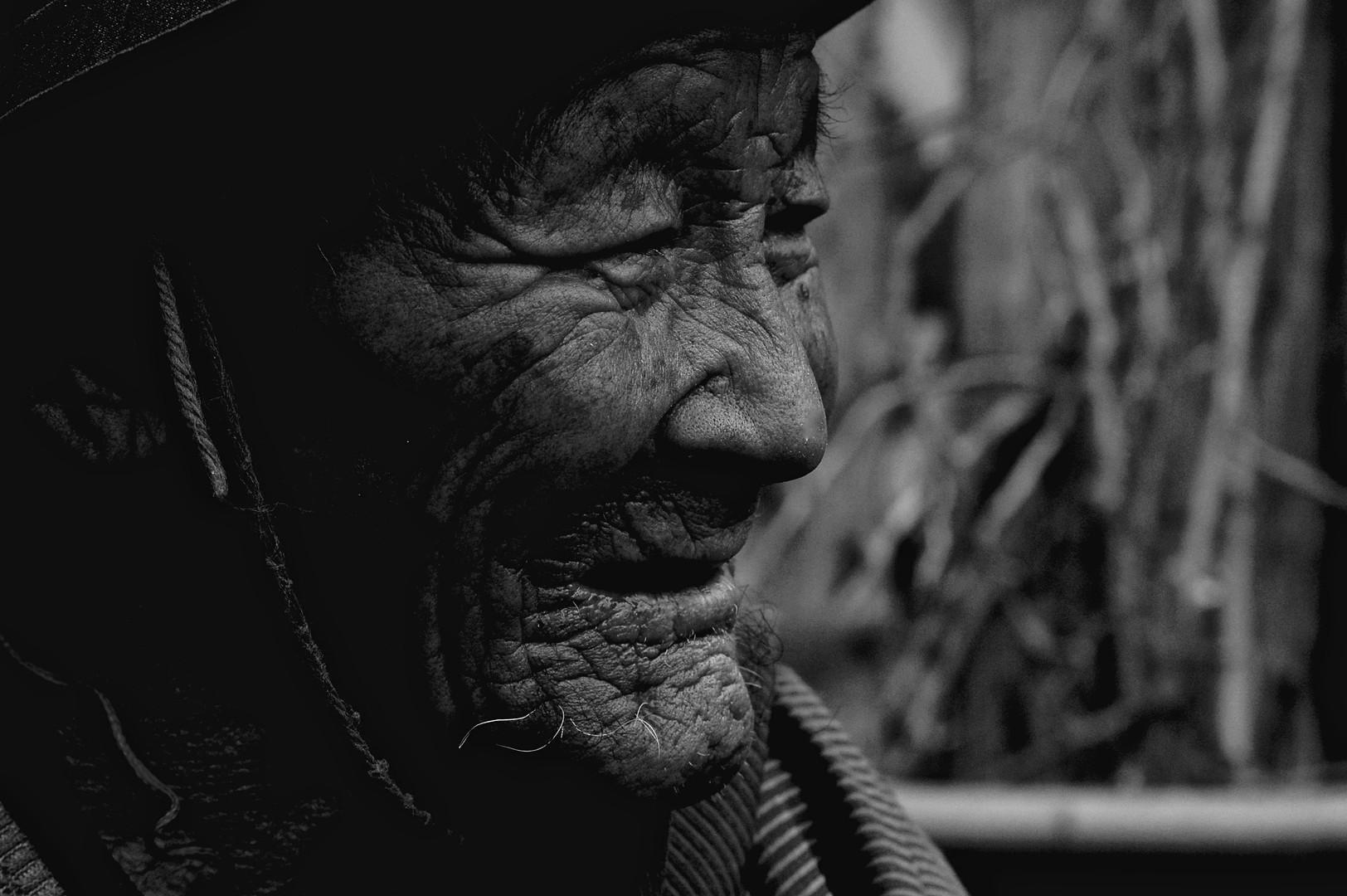 Witness - Tibet