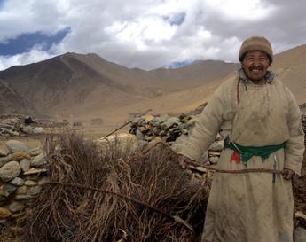 Nomad Kindling - Karnak, Ladakh