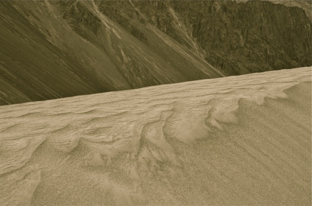 The sands of the Nubra valley offer up distinct contrast to our beloved mountains