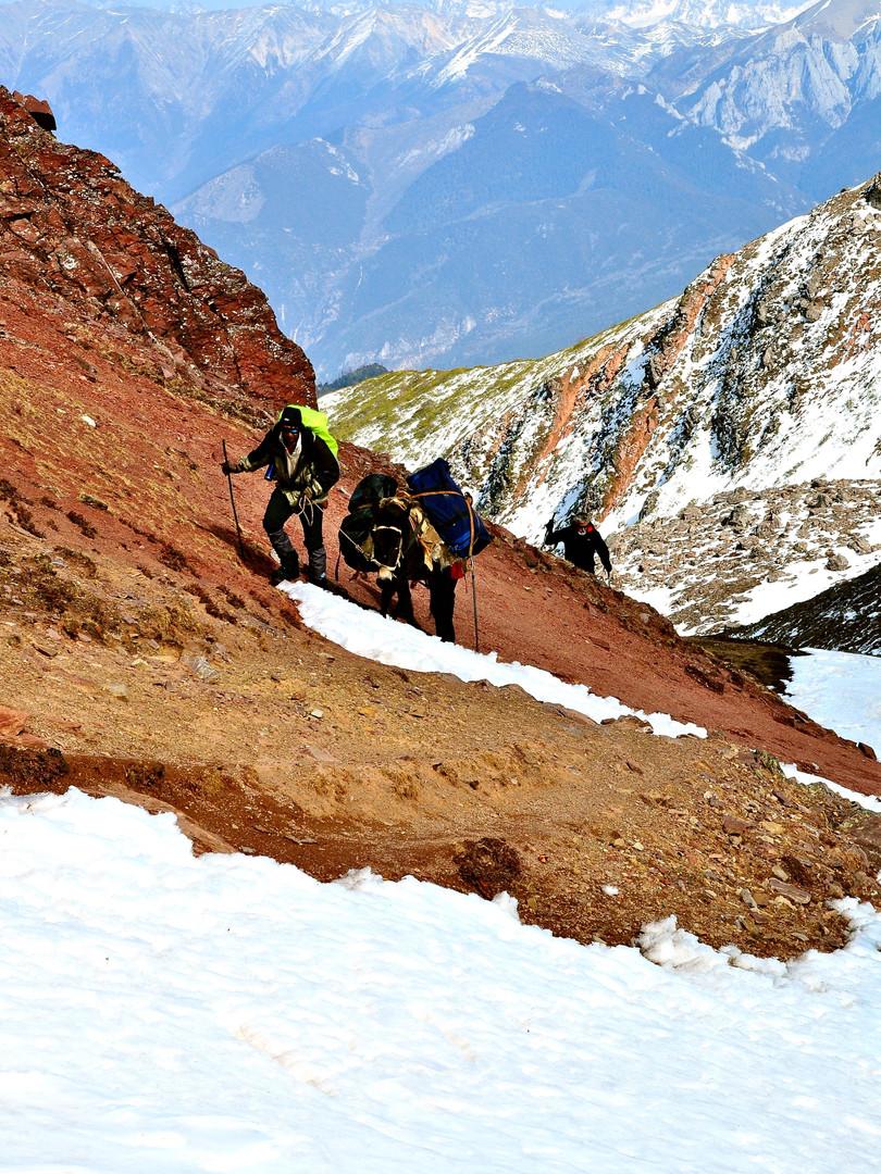 Ascent - Shola Pass, Yunnan