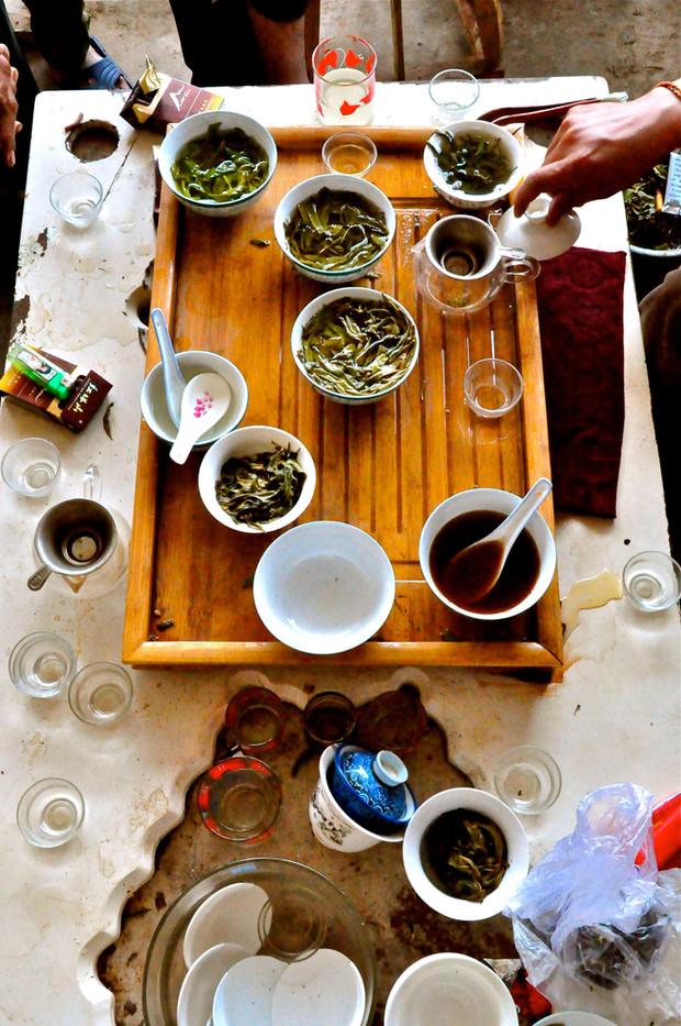 """""""Sit and drink Tea"""" - Lao Banzhang, Yunnan"""