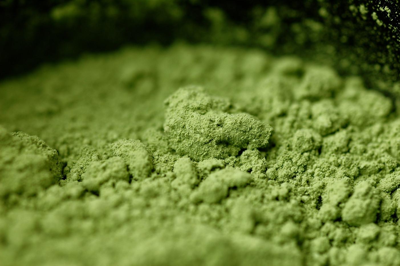Matcha - The Green Sea