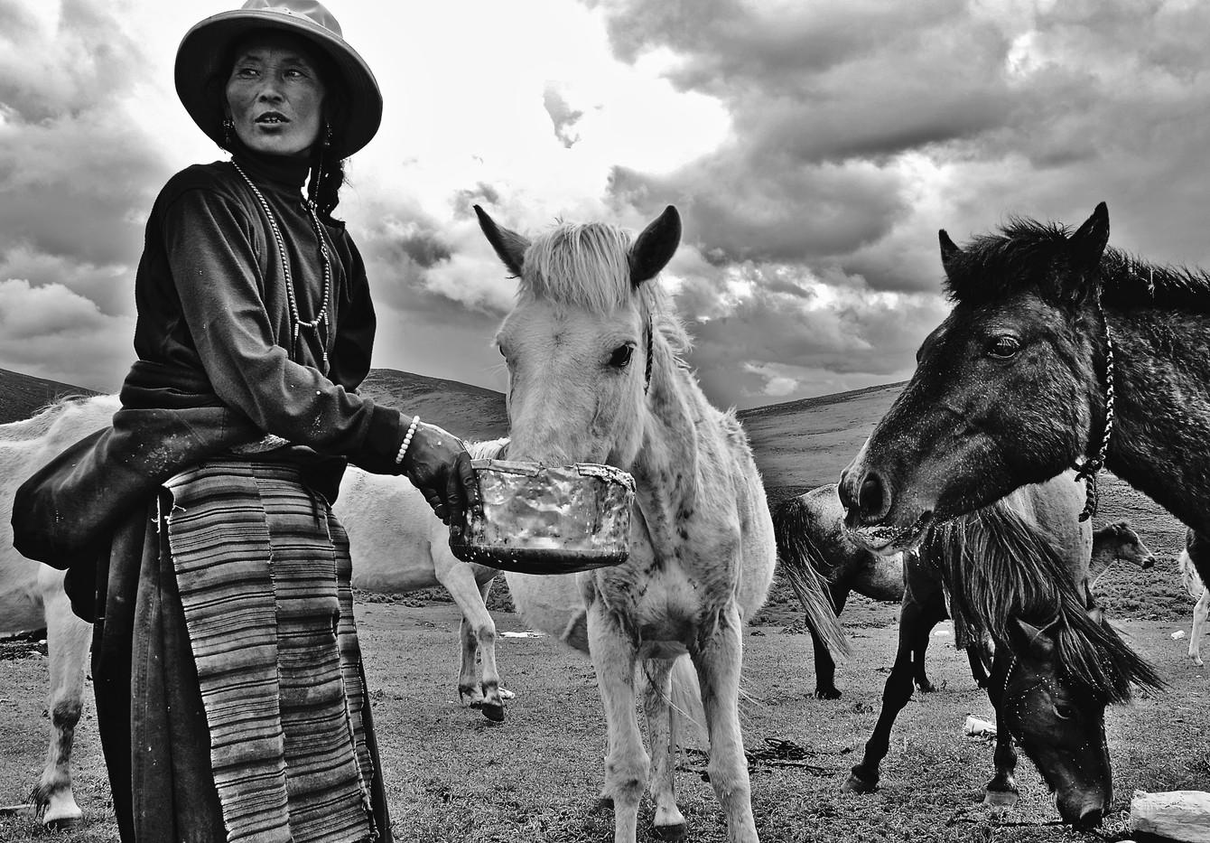 Storm and Horses - Horchuka, Ganze
