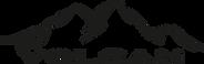 logo volcan transparente.png