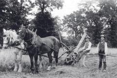 1920 Draper Farm, John Bygrave on the ha