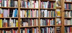 lit_shelves1.jpg