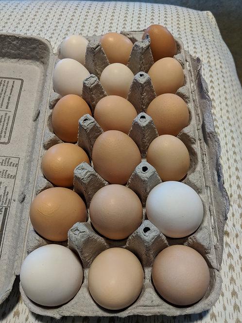 1 dozen Farm Fresh Eggs
