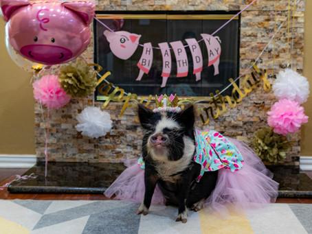 Ripley's 1st Birthday