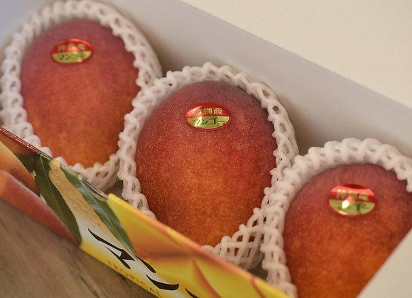 沖縄県産みつばちマンゴー