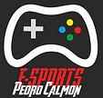 e-Pedro LOGO PAG SITE.png