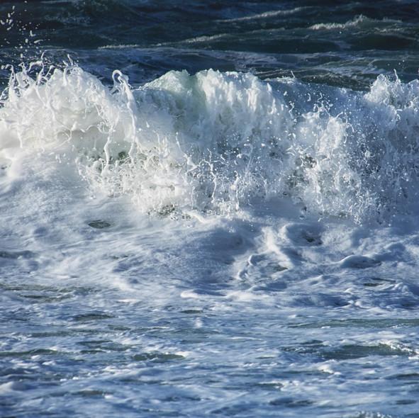 sea--shore-8.jpg