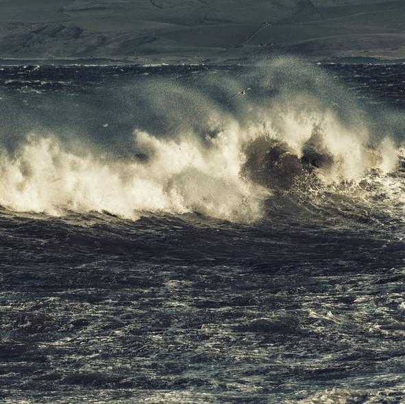 sea--shore-22.jpg