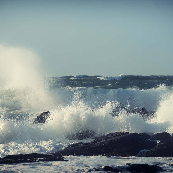 sea--shore-13.jpg