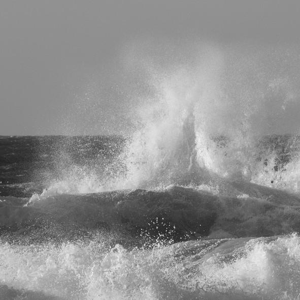 sea--shore-12.jpg