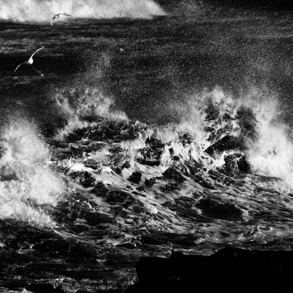 sea--shore-20.jpg