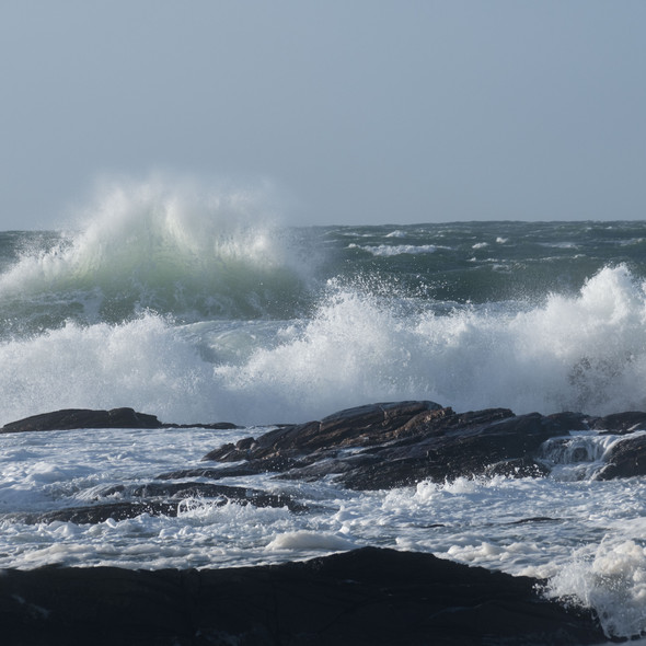 sea--shore-11.jpg
