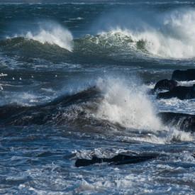sea--shore-21.jpg