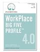 centacs_workplace-big-five-profile-4.0-i