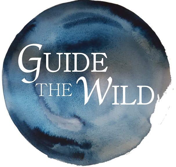 Guide the Wild water logo 2.png
