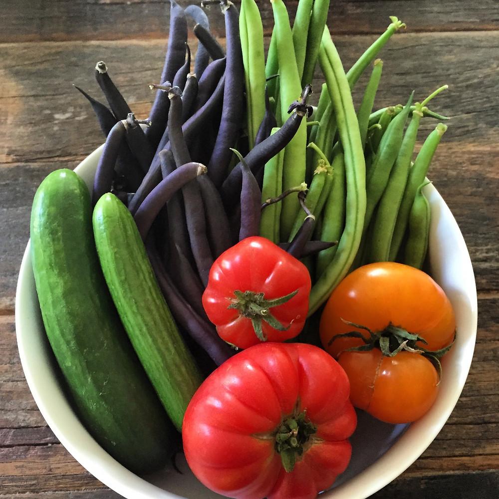 Farmers Market Vegetables photo by Kristin Pomeroy