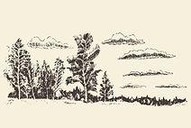 hand-drawn-landscape-forest-meadow-cloud
