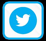 BotãoTwitter.png