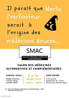 Affiche SMAC 2019 4.JPG